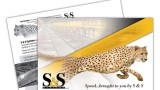 Postcard printing for S & S Systems